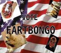 votefb.jpg